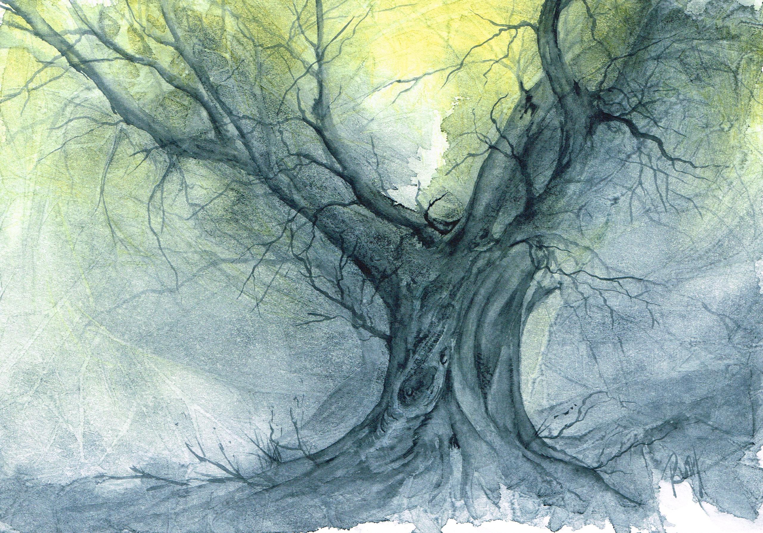 Ancient Oak large jpeg