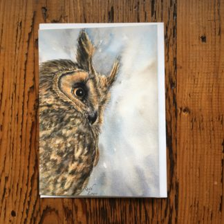 Long Eared Owl Card