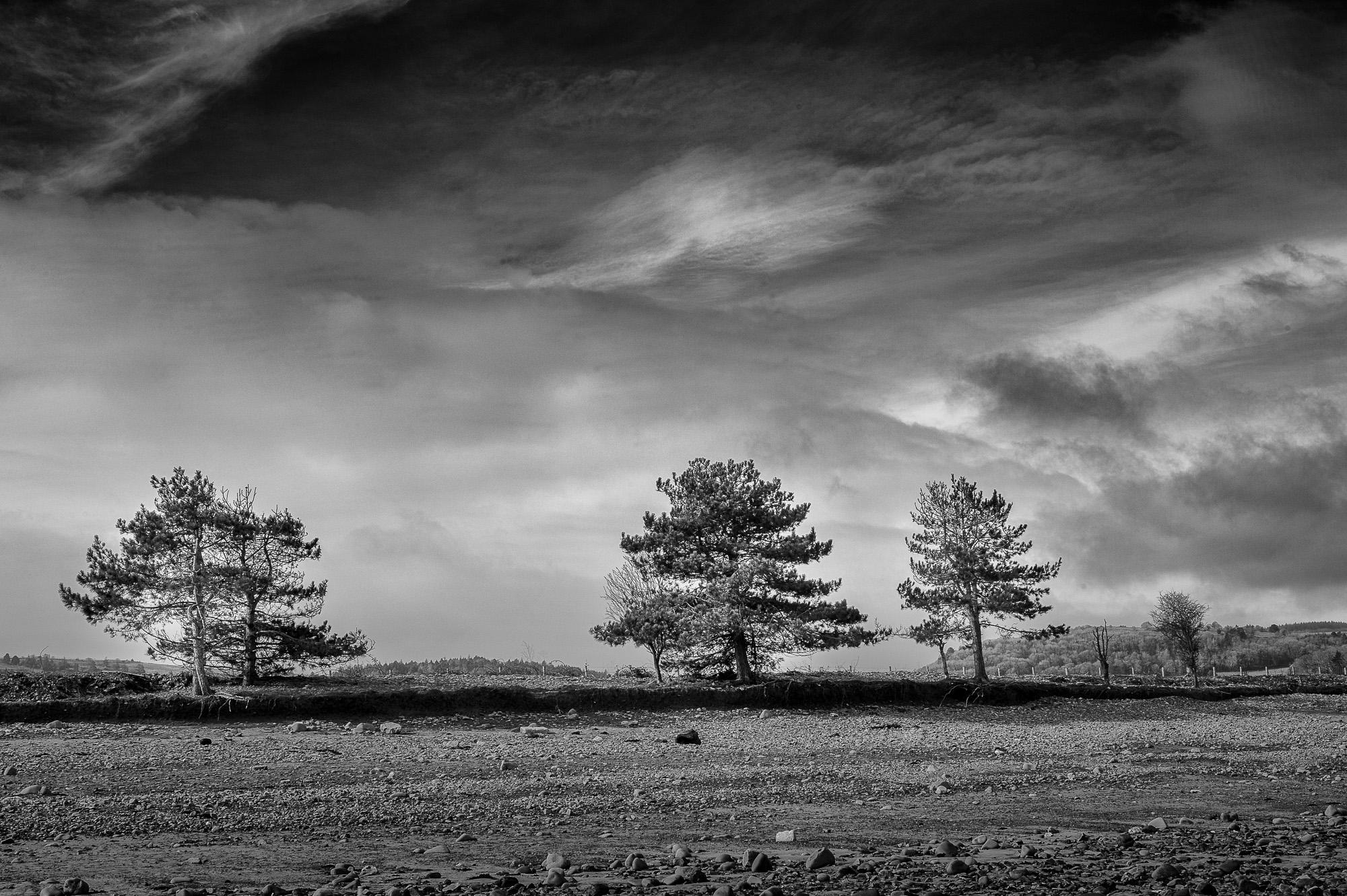 Mark Stothard Photography