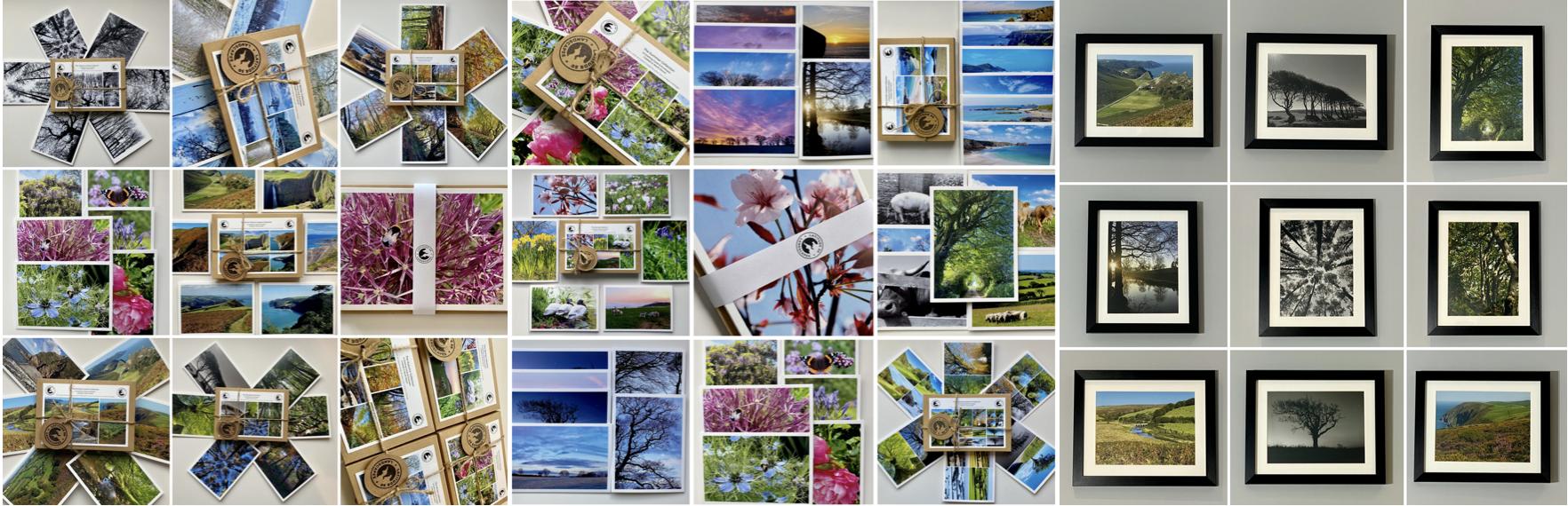 Latitude 50 Landscapes
