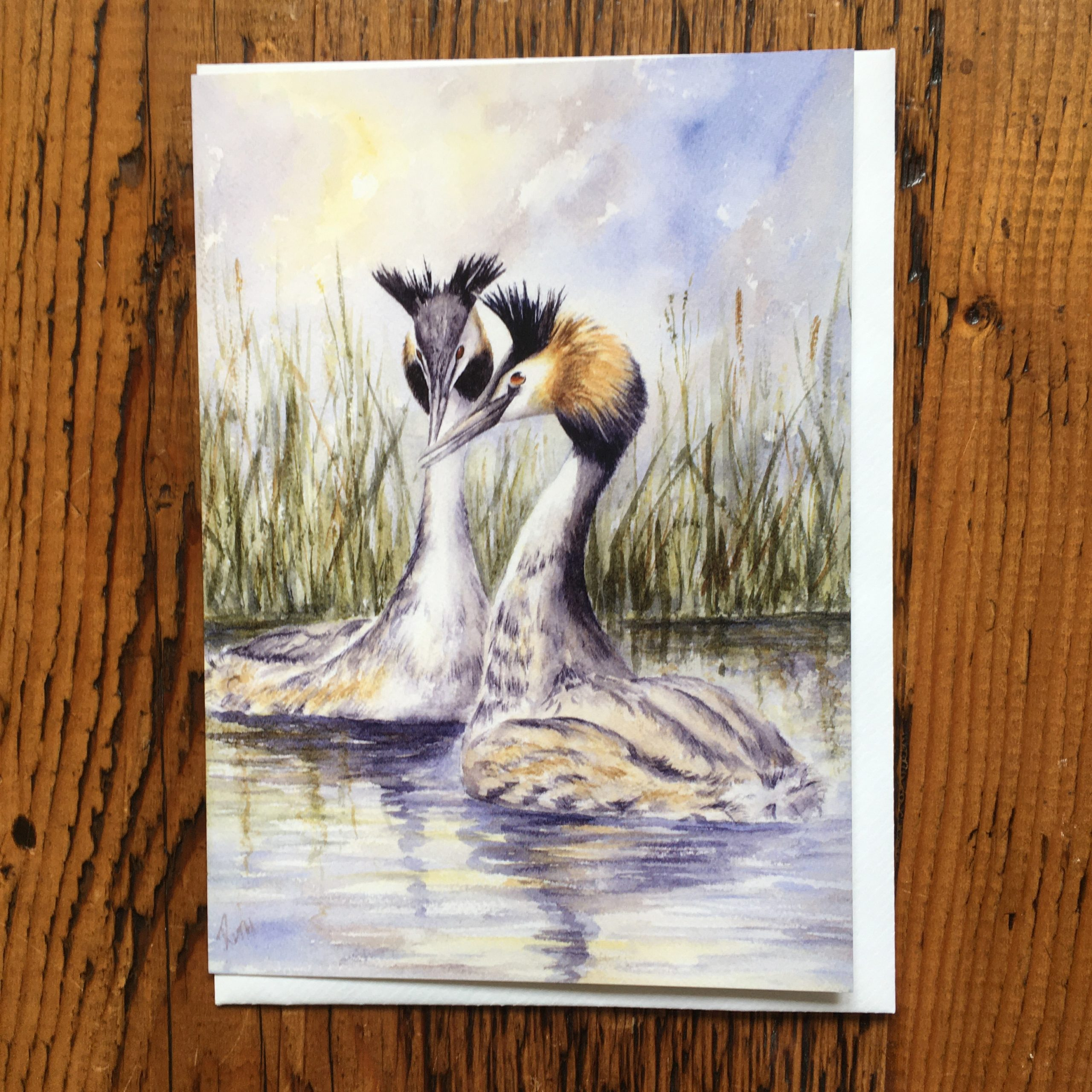 Crested Grebes Card